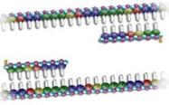 PCR-02