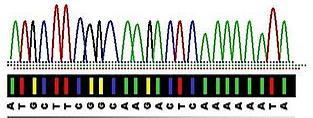 secuenciacion